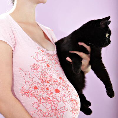 Toxoplasmosis And Risks To Pregnant Women